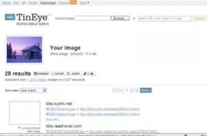 tineye reverse search tool